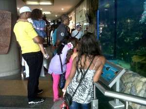 People admiring new aquarium
