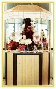 tropicana resort custom saltwater aquarium
