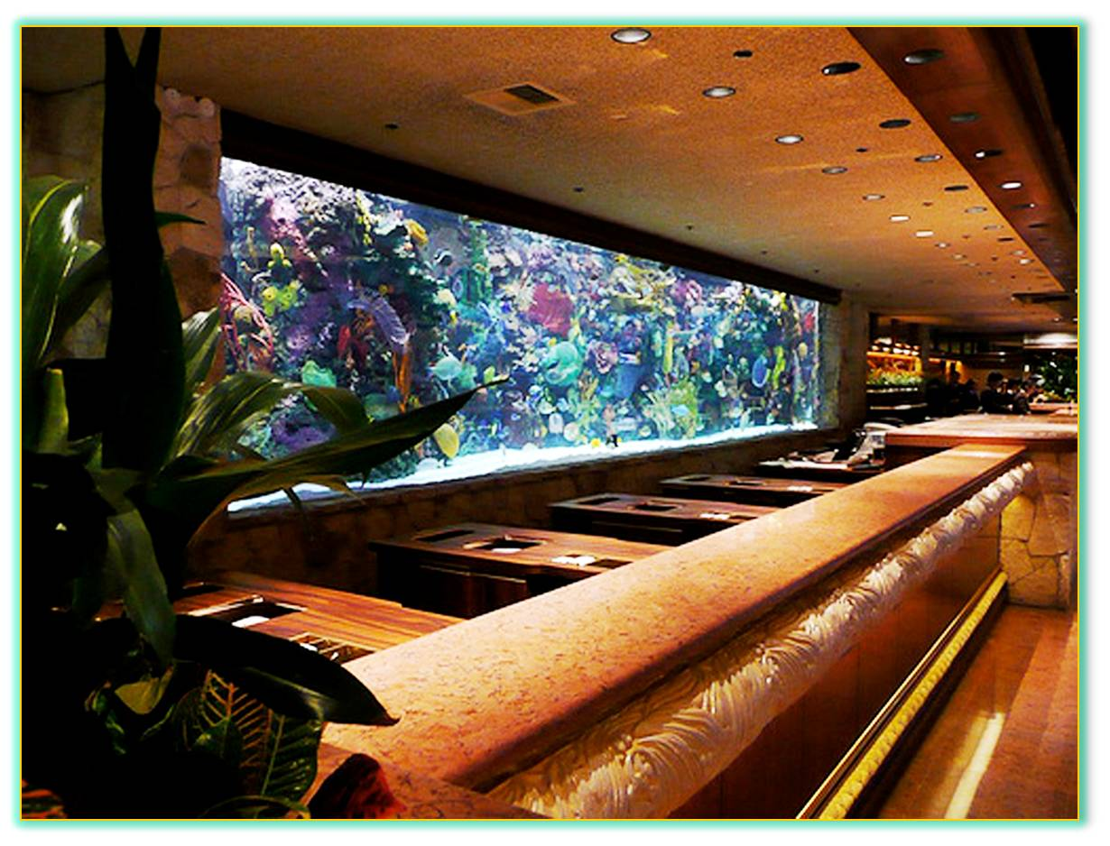 Saltwater aquarium - Las Vegas Casino Custom Saltwater Aquarium